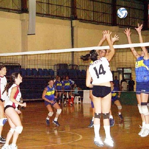 Red voley reglamentaria -